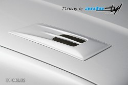 Auto tuning: Hood expiration II. - for paint