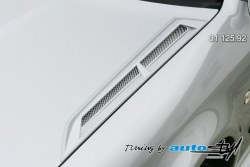 Auto tuning: Hood expiration III. - for paint