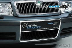 Auto tuning: Licence plate and radiator frame