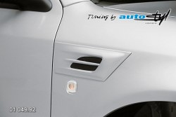 Auto tuning: Hood expiration - small - for paint