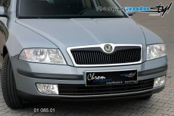 Auto tuning: Front grille - black design